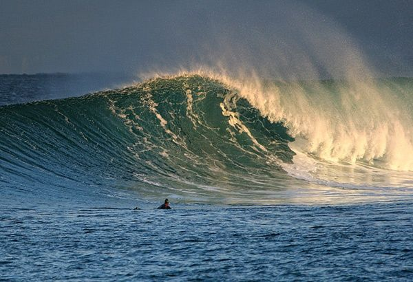 Surfer on a large wave