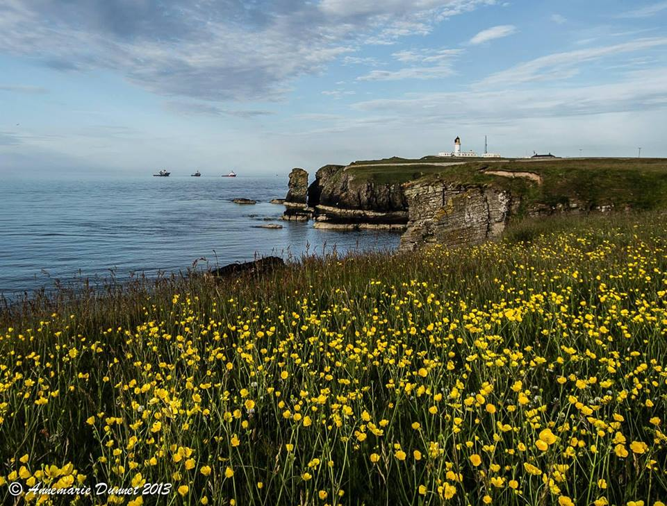 The view to Dunnet Head